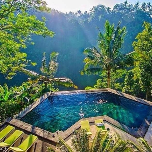 Pool with a view to a tropical paradise, Ubud, Bali