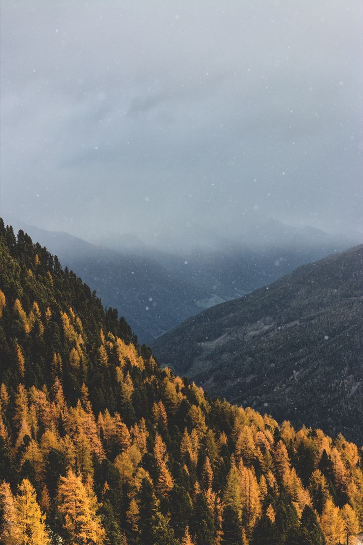 [#HD Wallpaper] #Autumn Autumn leaf color, #Photograph #Photography #LinkedIn Watch, Tree, Cloud  - Photo by eberhard grossgasteiger @eberhardgross (unsplash)  - Follow #extremegentleman for more pics like this!