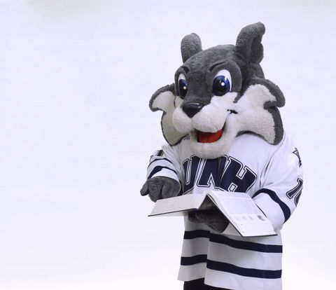 Image result for free unh stuff