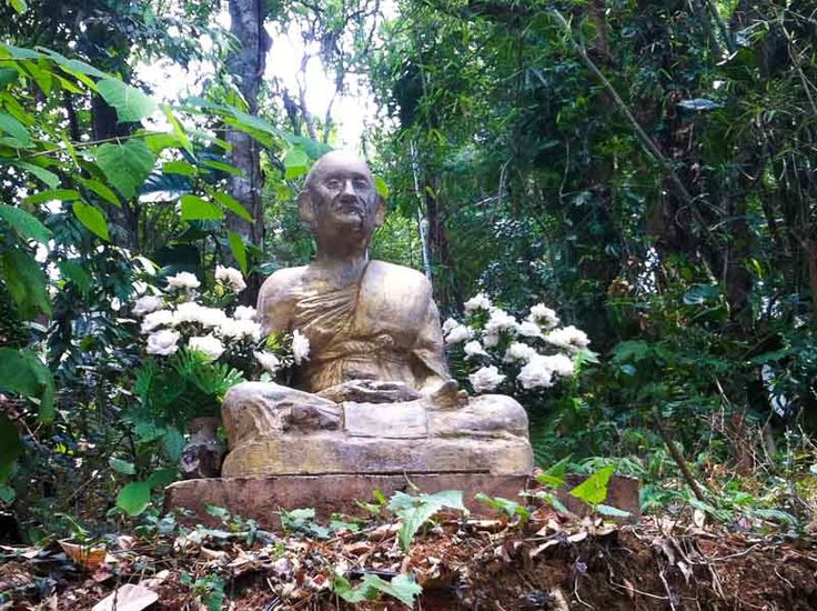 I decided to sign up for a Vipassana meditation course in Chiang Mai, Thailand as I felt like I needed to get some direction back in my life.