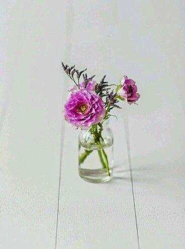 Wedding decoration/svatební dekorace