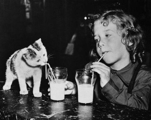 Brooklyn, 1949