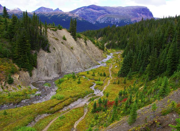 On the way to Snowbowl Campground, Skyline Trail, Jasper National Park