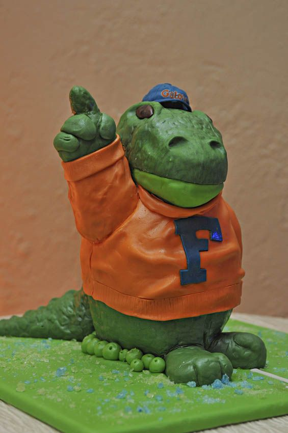 His cake - Go Gaters!