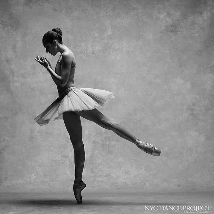"2,303 Likes, 9 Comments - San Francisco Ballet (@sfballet) on Instagram: ""We're thrilled to welcome new Principal Dancer Ana Sophia Scheller @la_scheller to San Francisco…"""