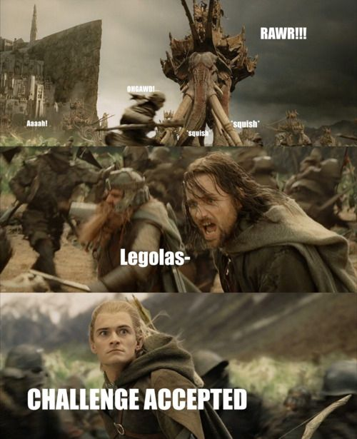 Like A Boss, The Lord, Orlando Bloom, Legolas, Rings, Middle Earth, Hobbit, Challenge Accepted, Challenges Accepted