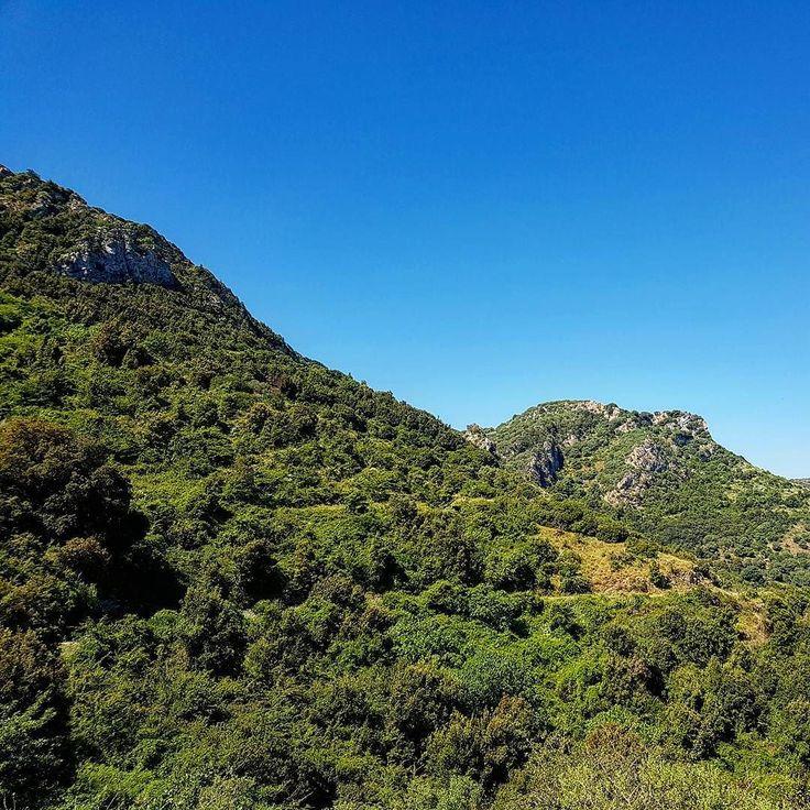 I rilievi lungo il sentiero 401 di Villasalto.  #escursione #villasalto #sardegna #sardinia #italia #italy #escursionismo #trekking #hiking #hike #panorama #landscape #montagna #mountain #outdoor #wilderness #green #verde #blue #blu #sentiero #trail #natura #nature #skyporn #sky #veganhiker #vegantrekker #vegantraveller #veganbackpacker