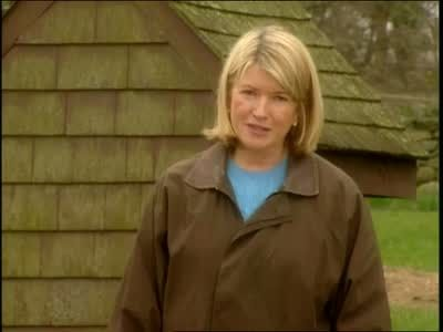 How to Grow Grass from Seed Videos | Home & Garden How to's and ideas | Martha Stewart