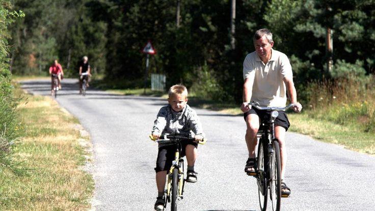 Endagsture Læsø   1-dagsture Læsø   Sælsafari   cykeltur Læsø   bustur Læsø   Læsø Kur