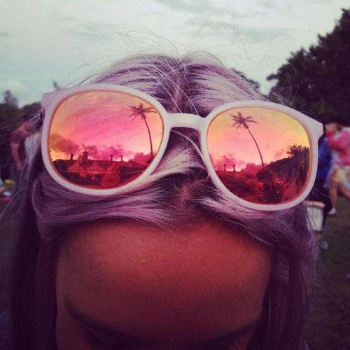 Palm tree shades.
