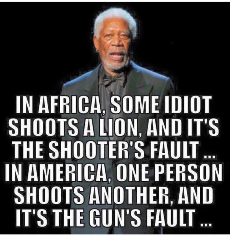 Image result for it's not the guns fault