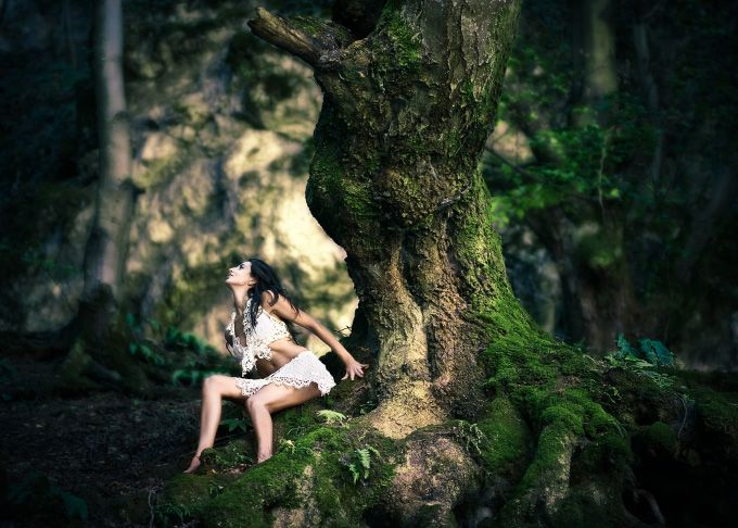 Forest's prisoner
