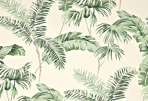 Nearly everyone in our office is obsessed with this palms and fronds wallpaper!