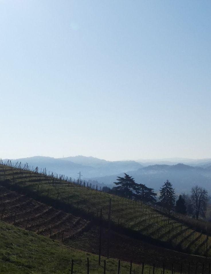 Gegend um Bistagno (AL) März 2017