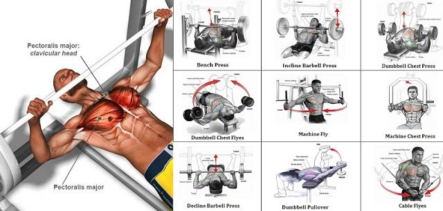 A Sample Chest Workout Routine - weighteasyloss.com