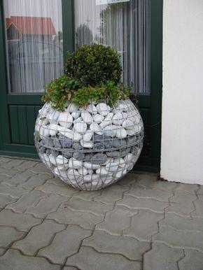 La clématite aura fière allure dans un cylindre  – garden