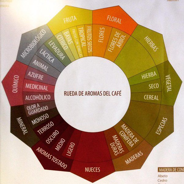 Rueda de aromas del café, por Coffee Consulate.