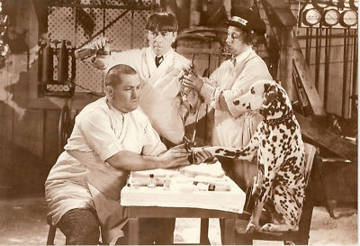 The Three Stooges Pedicure Scene Dalmation Postcard 27 | eBay