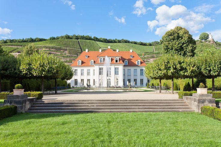 Die östlichsten Rebgärten Deutschlands im Weinbaugebiet Sachsen