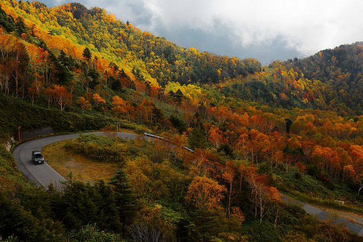 一路盤旋 Autumn Hairpin turn ~豊野南志賀公園線 Mountain pass @ Shiga Kogen 志賀高原, 長野~ | Flickr - Photo Sharing!