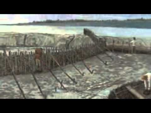 ▶ Medmerry sea defence scheme - YouTube