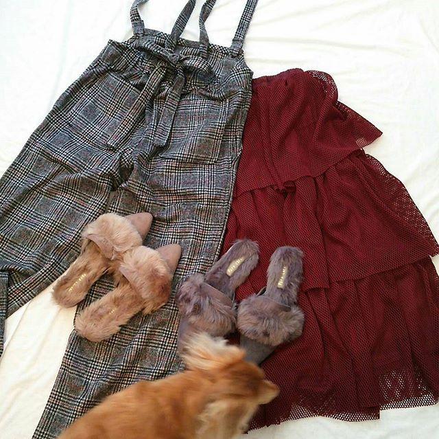 2017.11.7 #購入品  バックが可愛いグレンチェックのサロペ♥ #rps (r.p.s)  赤ラインがこれまた可愛いんです . 三段フリルのメッシュスカート♥ メッシュって夏のイメージだけど… そんなの関係ね~(よしお風にw) スポーツmixで着たら絶対に可愛いはず😆👌 #greenparks  ファースリッパサンダルもgreenparksのモノです💁✨ . み~んなZOZOTOWNのセールで お安くGET~🎵 ファーサンダルは1188円😂 店舗より安く買えた…🙌✨笑 . #置き画#置き画くら部 #ショッピング#お買い物 #ZOZOTOWN#ゾゾタウン #セール#値下げ##戦利品 #購入品19 #くんくんチェック#犬#愛犬 #ダックス#短足部#癒やし