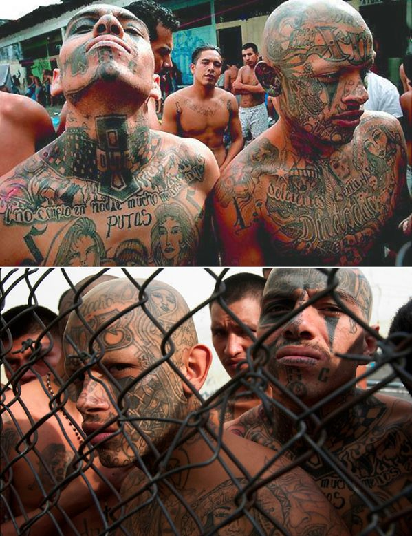 Gang #Tattoos Around The World.  If you see someone with a tat that reads: MS13, MS or just 13, you're likely facing a member of...