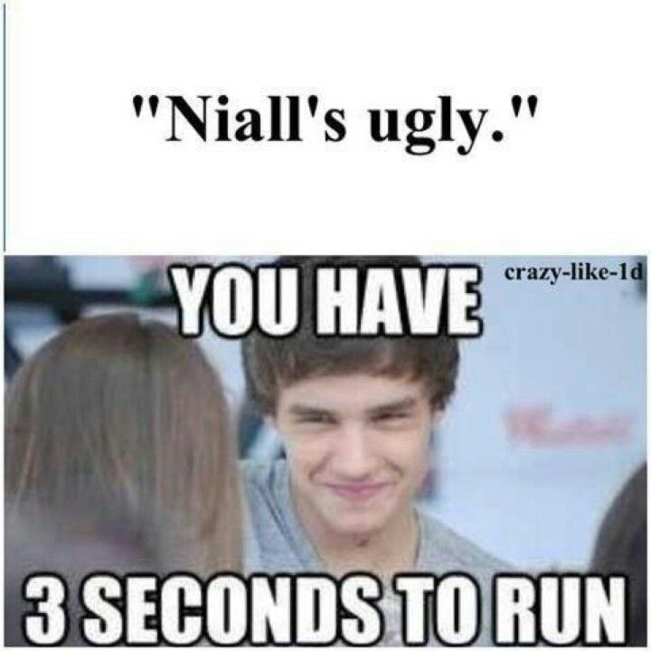 One direction. One direction funnys. Liam payne. Niall horan.