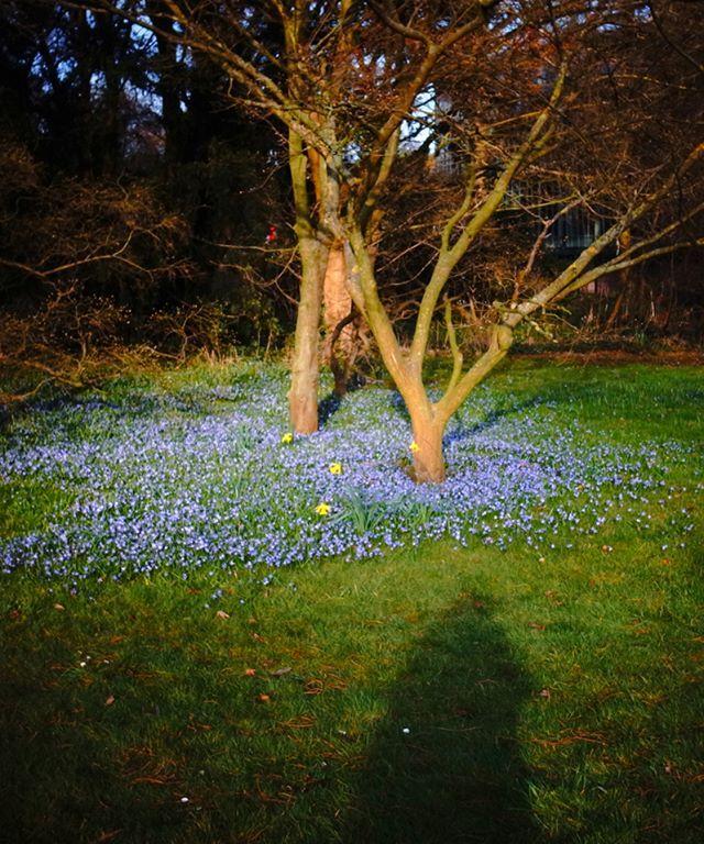 #frühling #künstlertreff #künstlerdate #spring http://yoga-diary.de/2016/04/das-kuenstlerdate/