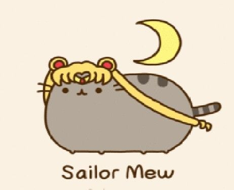 30 Best Images About Pusheen On Pinterest Hot Coco