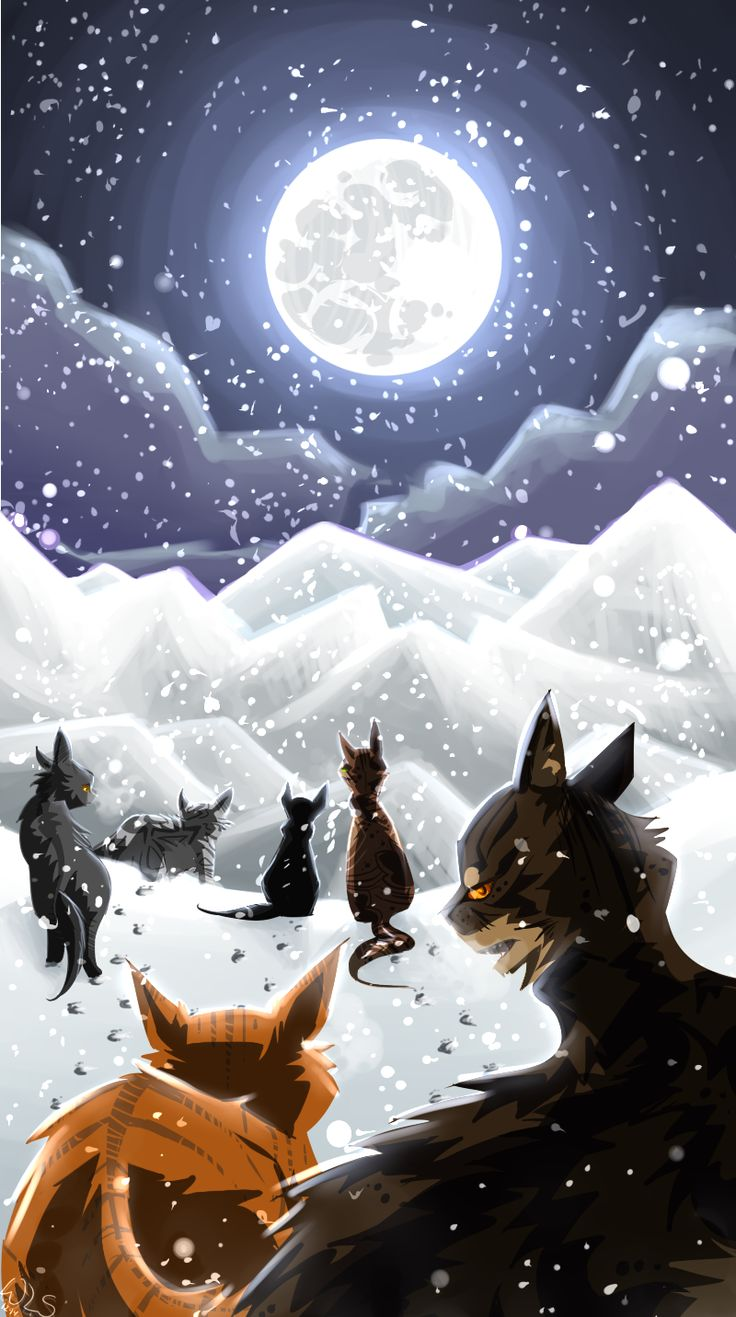 727 Best Warrior Cats Images On Pinterest