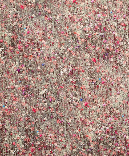 Floral Mawston Meadow Cotton in Pollen | Nesfield Collection by Liberty Art Fabrics – Interiors | Liberty.co.uk