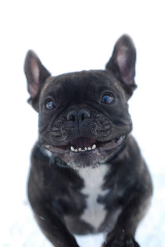 *SMILE!*