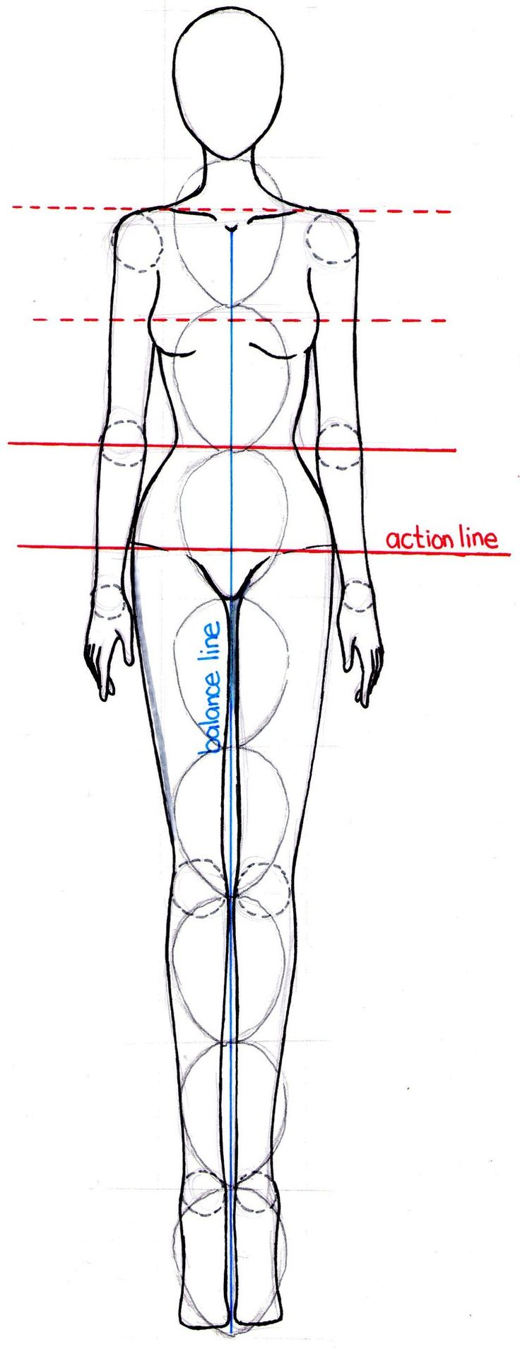 Fashion illustration body proportions and drawing figures