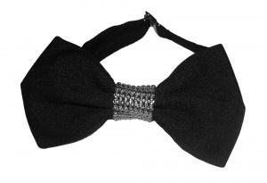 elegant bow tie for women