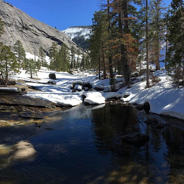 Want a piece of Yosemite? Just a few spots are left for our first Yosemite trip of 2017. Wildernesstrio.com • • #backpacking #earth #traillife #hiker #yosemite #lovehiking #mountainlife #wanderlust #explore #neverstopexploring #tradeinyourview #camping #river #travelgram #peakbagging #mountainlife #rei1440project #optoutside #yosemitenationalpark #naturephotography #california #naturelovers #goexplore #adventurethatislife #hikingadventures #wilderness #nature #reconnect #snow