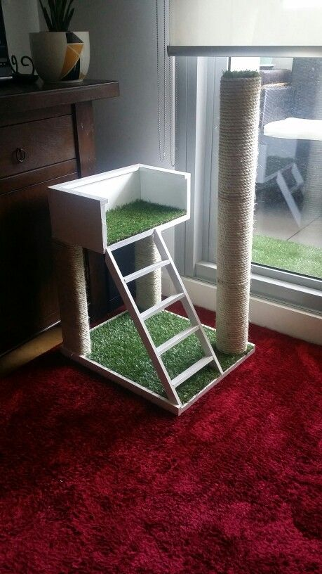 Cat Scratching Post Home Diy Pinterest Cute Cats