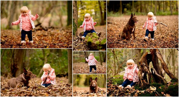It's been so long since I took any pics of Florence I decided today was the day to get a few autumn shots during our morning walkies at Rufford Abbey.  #MattSelbyphotography #Nikon #D750 #NottinghamPortraitPhotography #PortraitphotographyNottingham  #justgoshoot #exploretocreate #peoplescreatives #visualsoflife #passionpassport  #liveauthentic #epic #ihavethisthingwithcolour #inspireatlas #Fashionphotography  #Urbanart #Photographybusiness #awesomestyle #epic #photooftheday