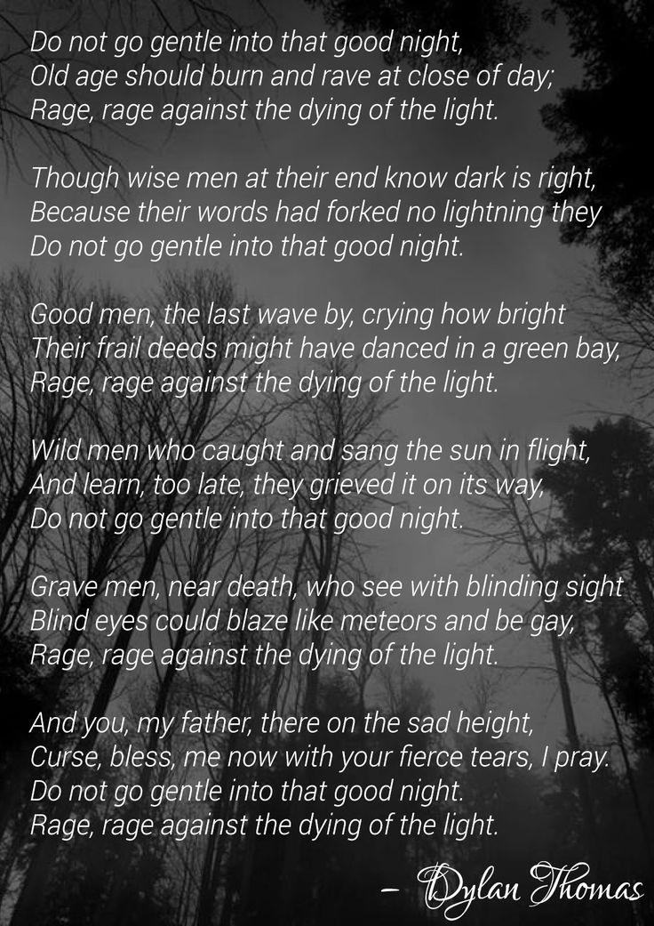 Dylan Thomas Recites  Do Not Go Gentle into That Good Night  and     nmctoastmasters Help me do my essay do not go gentle into that good night and for eleanor