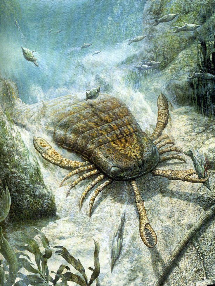 тарасова картинки про древних морских животных палейкин намерен все-таки