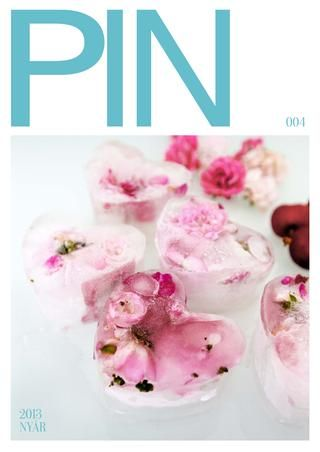 PIN magazin summer