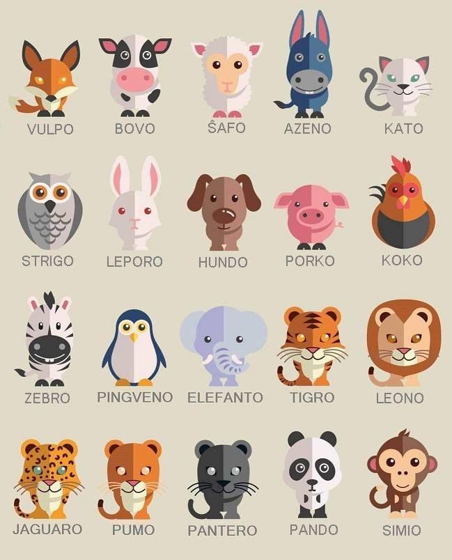 Animals in Esperanto                                                                                                                                                                                 Plus