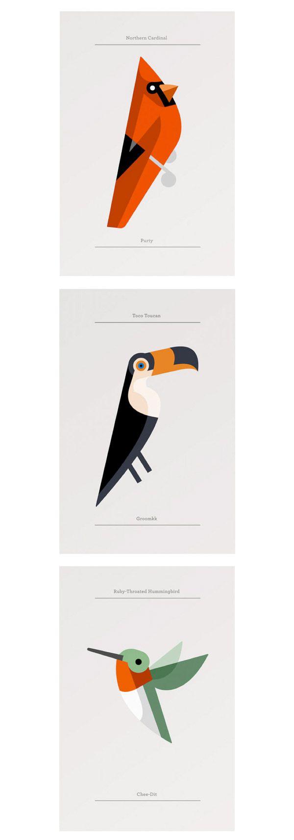Josh Brill - Birds: Cardinal, Toucan and  Hummingbird