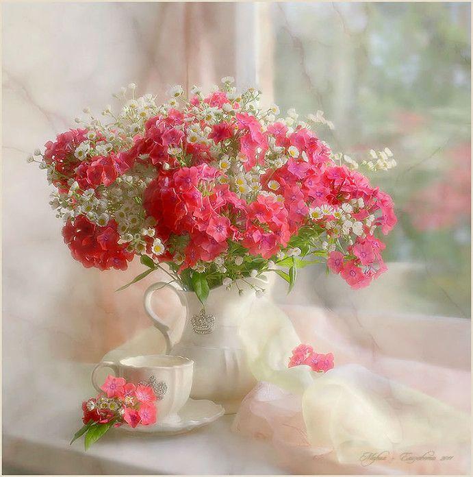 открытка утренний букет пораженных цветов