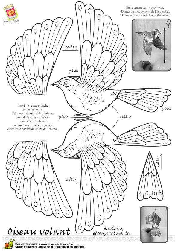 Coloriages oiseau legende nb