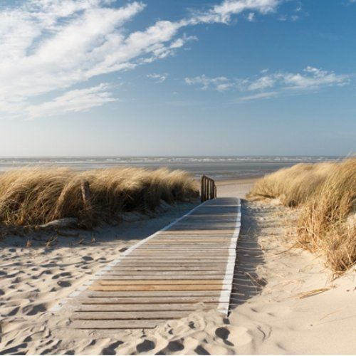 Texel, Holland. Some of my favorite memories with my family are from our trips to Texel.