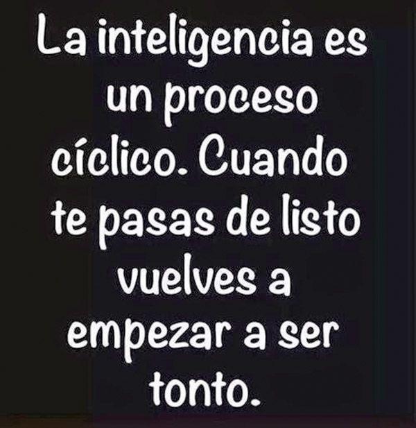 La inteligencia es un proceso cíclico