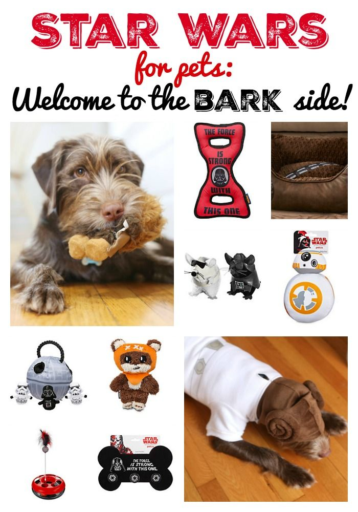 Star Wars for Pets: Welcome to the Bark Side- awesome Star Wars finds for your furry family members!! StarWarsPets Pets PetcoCommunity Sponsored
