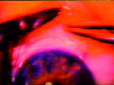 Read more: https://www.luerzersarchive.com/en/magazine/commercial-detail/rotterdam-film-festival-22663.html Rotterdam Film Festival Tags: Young & Rubicam (Y&R), Amsterdam,Johan Kramer,Martin Cornelissen,PMSvW/Y&R/Rene van der Berg Productions, Amsterdam,Rotterdam Film Festival Tags: Young & Rubicam (Y&R), Amsterdam,Johan Kramer,Martin Cornelissen,PMSvW/Y&R/Rene van der Berg Productions, Amsterdam,Rotterdam Film Festival