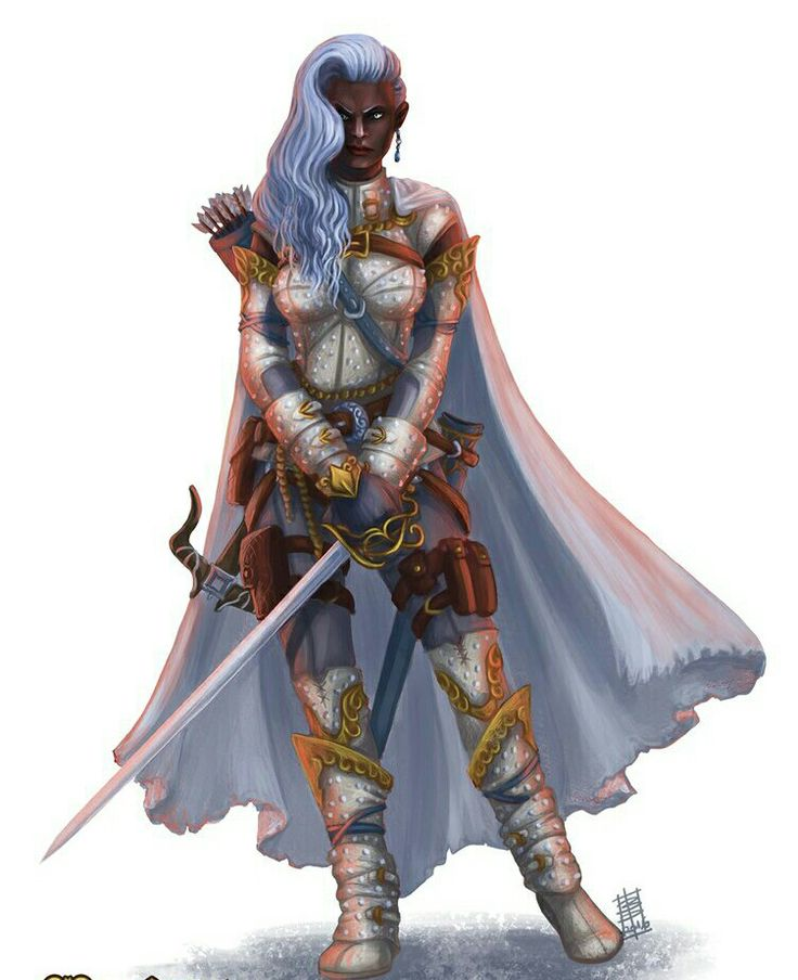 Female Paladin - Pathfinder PFRPG DND D&D d20 fantasy